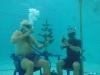 Новогодняя елка подводников